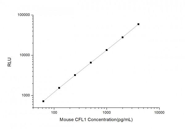 Mouse CFL1 (Cofilin 1, Non-Muscle) CLIA Kit