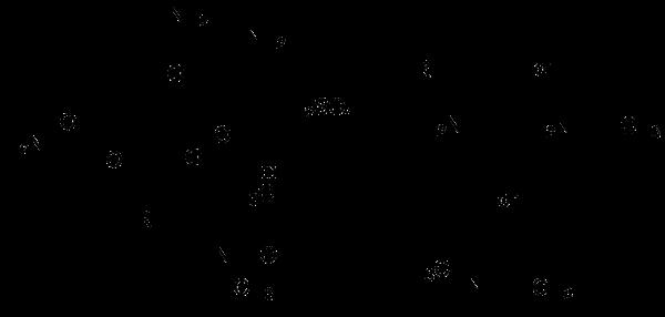 Gentamicin sulfate (USP Grade)