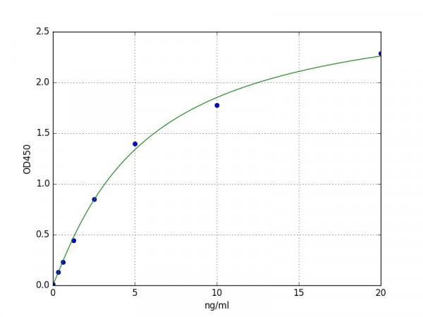 Porcine TIMP1 / Metalloproteinase inhibitor 1 ELISA Kit