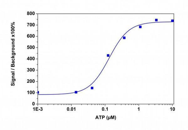Calbryte(TM)-590 AM