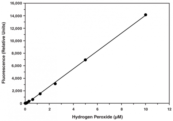 Hydrogen Peroxide Cell-Based Assay Kit
