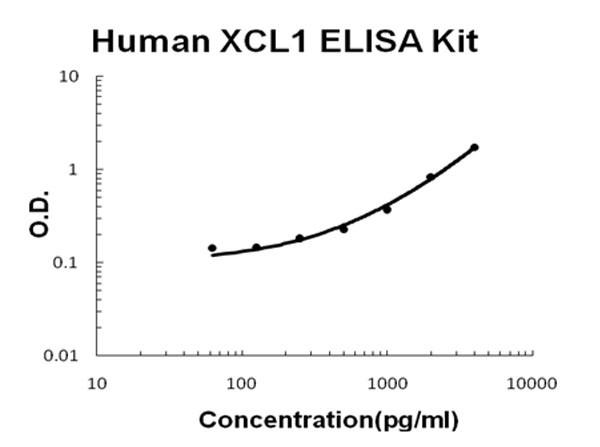 Human XCL1 - Lymphotactin ELISA Kit