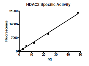 HDAC-2, active human recombinant protein, His Tag