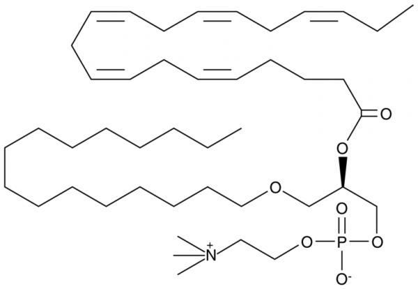Eicosapentaenoyl PAF C-16