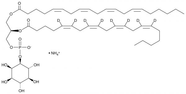 PtdIns-(1-arachidonoyl, 2-arachidonoyl-d8) (ammonium salt)