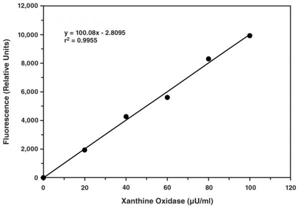 Xanthine Oxidase Fluorometric Assay Kit