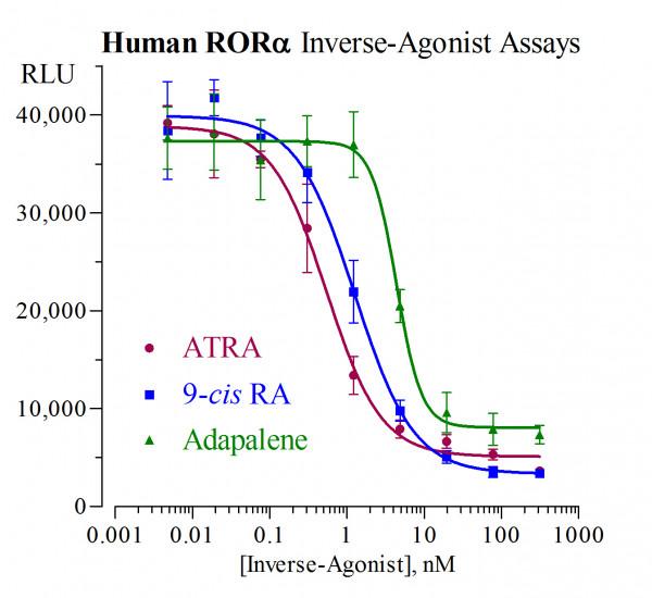 RORa (Human) Reporter Assay System