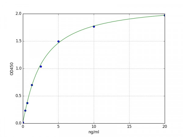 Mouse Syndecan 4 / SDC4 ELISA Kit