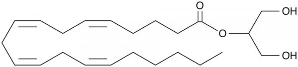 2-Arachidonoyl Glycerol
