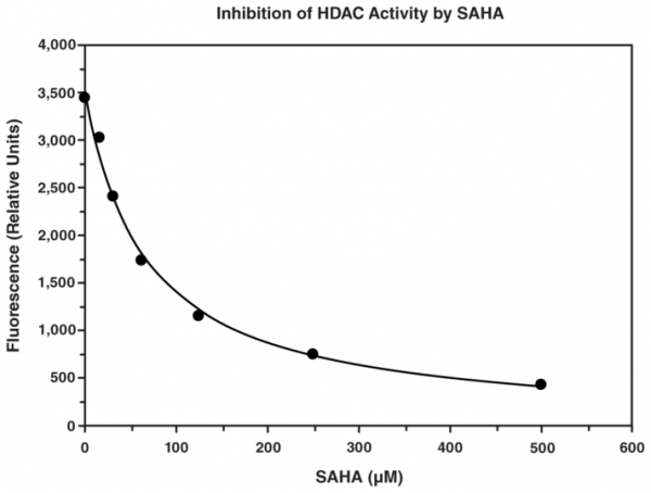 HDAC Cell-Based Activity Assay Kit