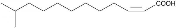 cis-Delta2-11-methyl-Dodecenoic Acid