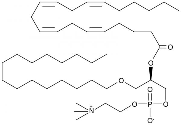 Arachidonoyl PAF C-16