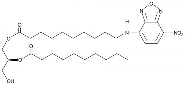 1-NBD-decanoyl-2-decanoyl-sn-Glycerol