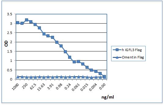 IGFLR1 (human):Fc (human) (rec.)