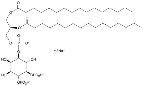 PtdIns-(4,5)-P2 (1,2-dipalmitoyl) (sodium salt)