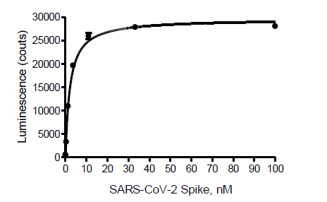 ACE2:SARS-CoV-2 Spike Inhibitor Screening Assay Kit
