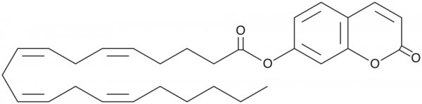 7-hydroxycoumarinyl Arachidonate