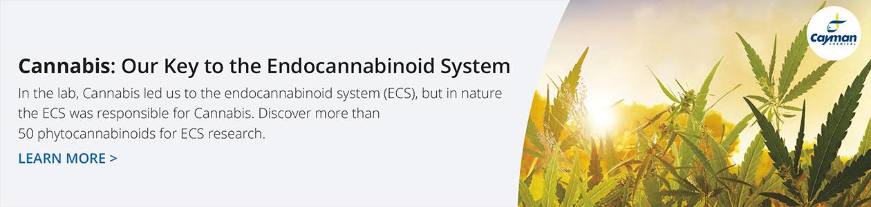 Phytocannabinoid Research