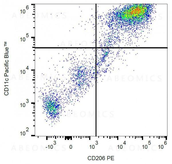 Anti-CD206 / MMR Monoclonal Antibody (Clone:15-2)-PE Conjugated