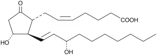 20-ethyl Prostaglandin E2