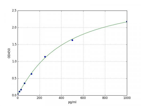 Rabbit OC / BGP / Osteocalcin / Bone Gla Protein ELISA Kit