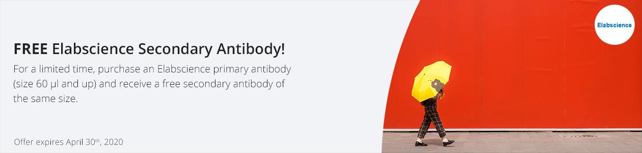 Elabscience Primary Antibodies