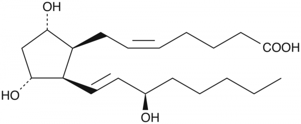 8-iso-15(R)-Prostaglandin F2alpha
