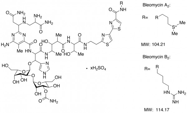 Bleomycin complex (as sulfate salts) (Blenoxane, Bleo, Blexane)