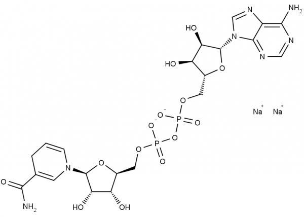 NADH, disodium salt