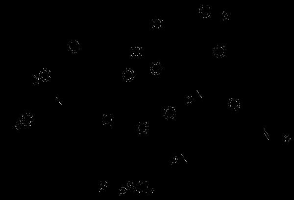 G418, sulfate