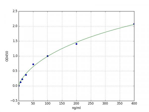 Rabbit Alpha-2 Macroglobulin / alpha2-M ELISA Kit