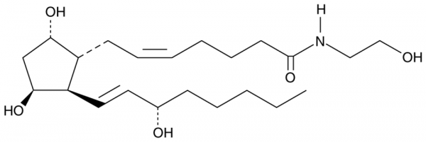 11beta-Prostaglandin F2alpha Ethanolamide