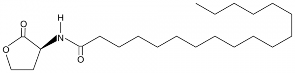 N-octadecanoyl-L-Homoserine lactone