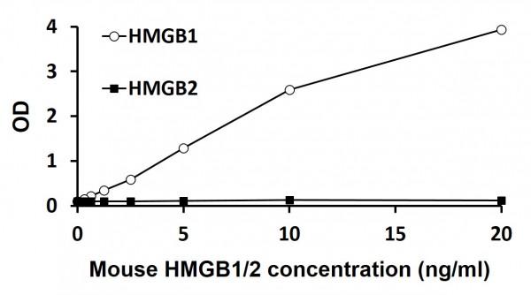 Mouse HMGB1 ELISA Kit