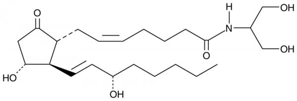 Prostaglandin E2 serinol amide