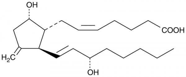 11-deoxy-11-methylene Prostaglandin D2