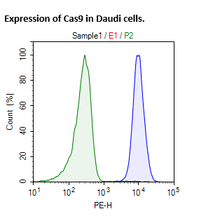Cas9 Expressing Daudi Cell Pool