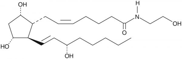 Prostaglandin F2alpha Ethanolamide MaxSpec(R) Standard
