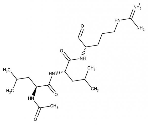 Leupeptin (Ac-Leu-Leu-Arginal-hemisulfate)