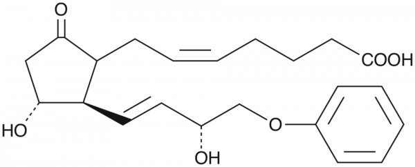 16-phenoxy tetranor Prostaglandin E2