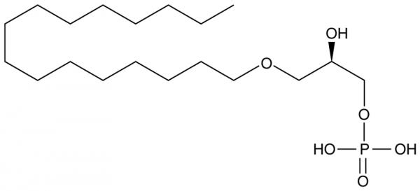 1-Hexadecyl Lysophosphatidic Acid