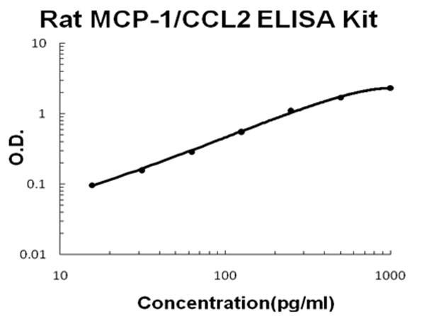 Rat MCP-1 - CCL2 ELISA Kit