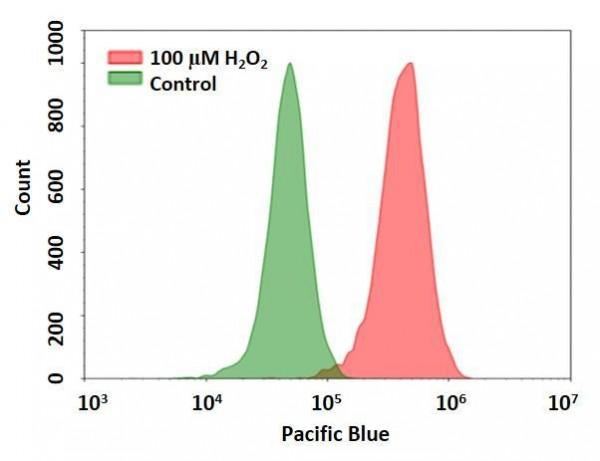 Cell Meter(TM) Intracellular Fluorimetric Hydrogen Peroxide Assay Kit *Blue Fluorescence Optimized f