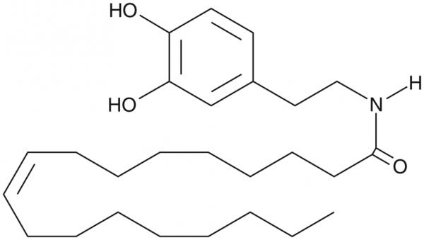 N-Oleoyl Dopamine