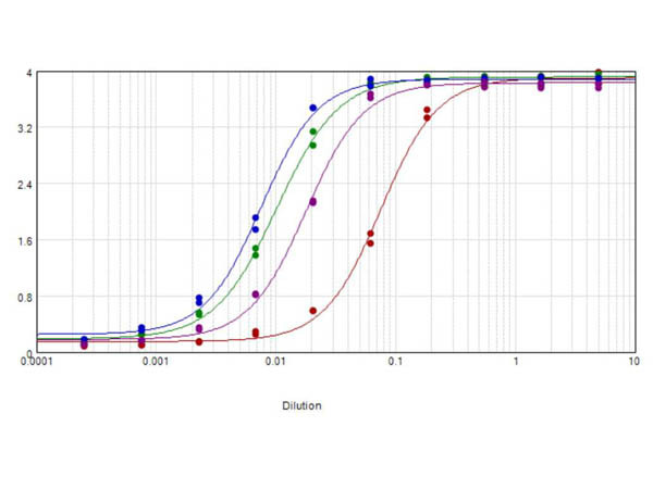 Anti-Dog IgG F(ab')2 [Rabbit] Peroxidase conjugated