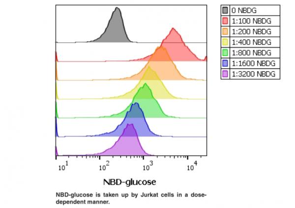 Glucose Uptake Cell-Based Assay Kit