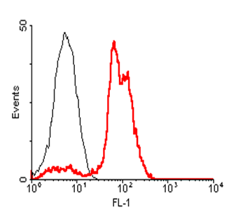 Anti-ACE2 (human), mAb AC18F (ATTO488)