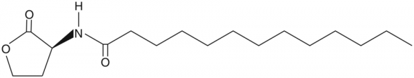 N-tridecanoyl-L-Homoserine lactone