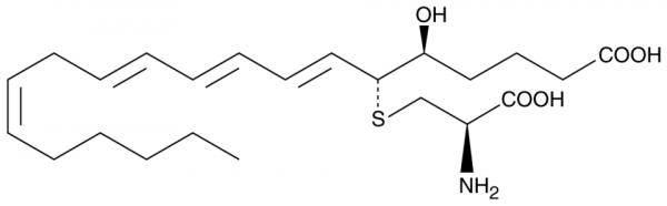 11-trans Leukotriene E4