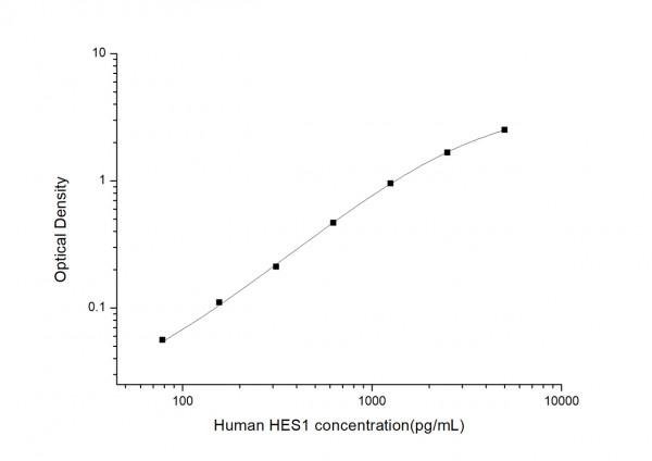 Human HES1 (Transcription factor HES-1) ELISA Kit